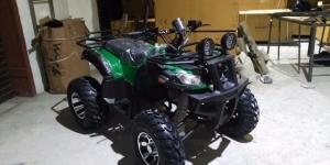 Квадроциклы Grizzly 250cc на Цепи Астрахань